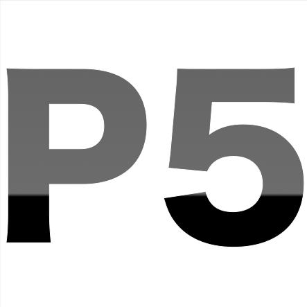 P5 Logo
